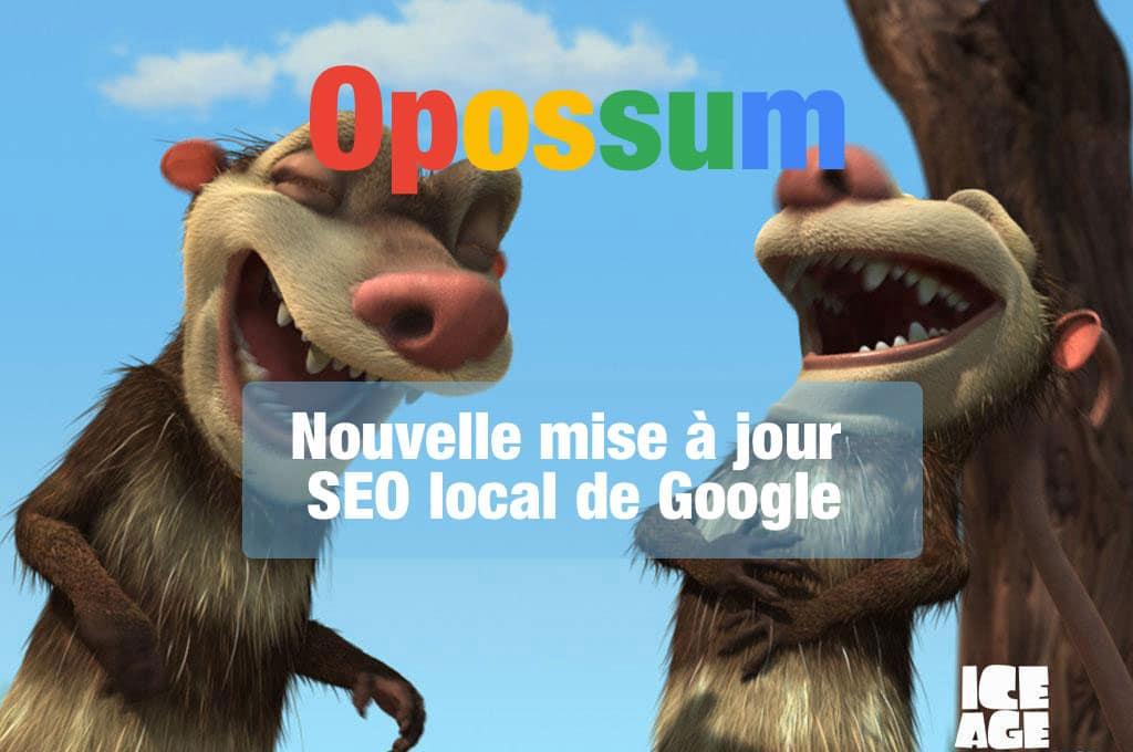 google opossum